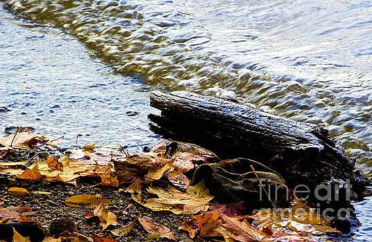 Waterlogged by Don Kenworthy