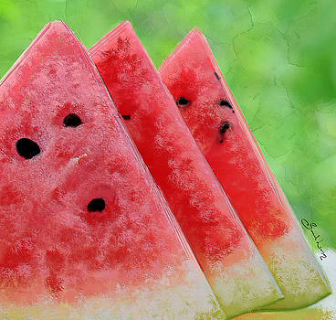 Watermelon Slices by Sannel Larson