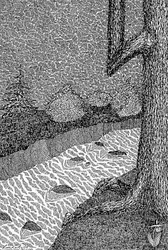 Waters Creek by Melanie Rochat