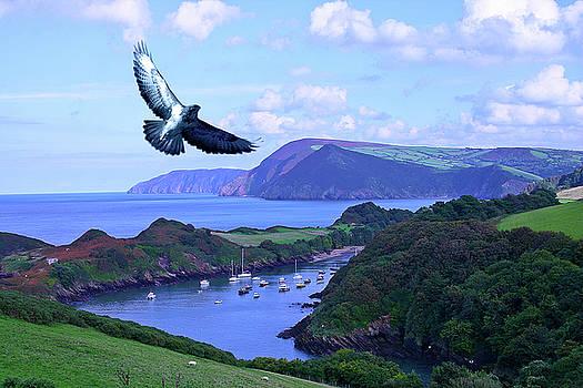 Watersmouth North Devon by Richard Marks
