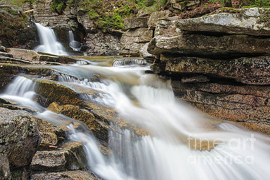 Waterville Cascades - Waterville Valley New Hampshire by Erin Paul Donovan