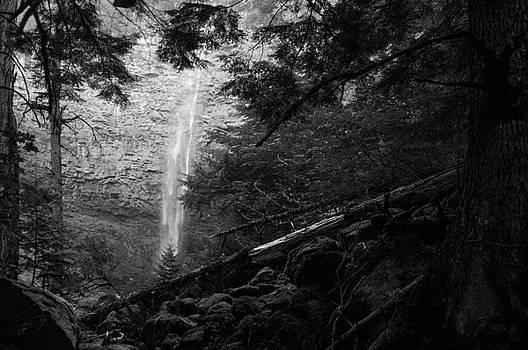 Watson Falls, Oregon by Larry Goss
