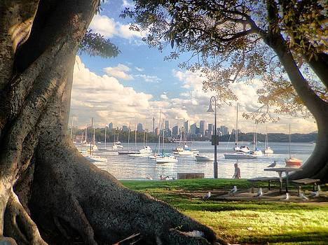 Richard Lee - Watsons Bay No.1