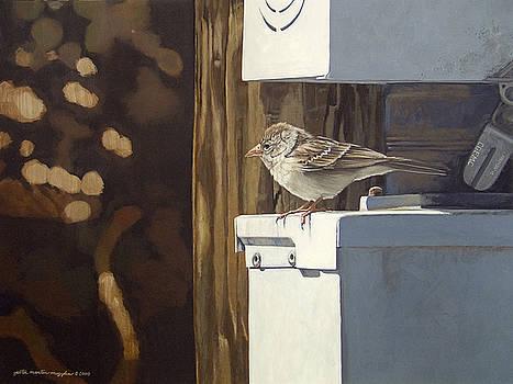 Watt a Bird by Peter Muzyka