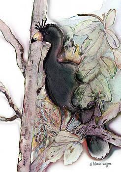 Wattled Curassow by Arline Wagner