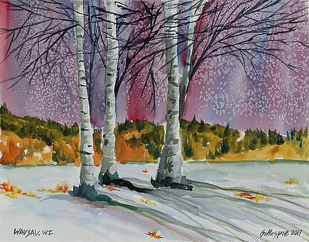 Wausau Winter by Ted Gillespie
