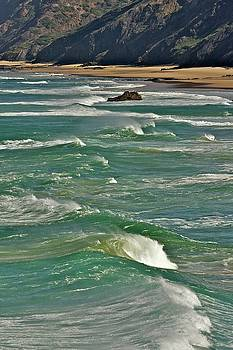 Wave Action by Colette Panaioti