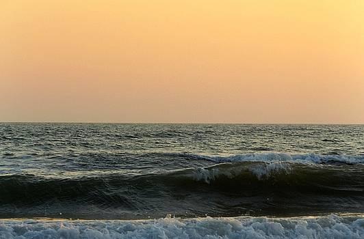 Wave  by Julie Pappas
