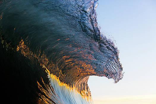 Wave by Ryan Moore