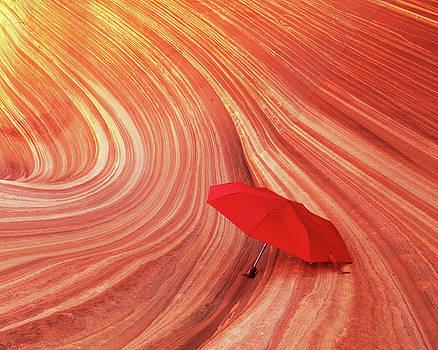 Wave Umbrella by Norman Hall