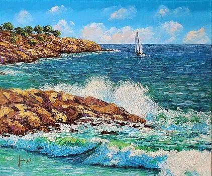 Waves and rocks by Jean-Marc JANIACZYK