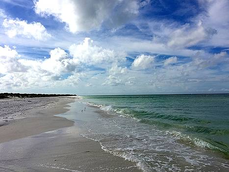 Waves and Sand by Melany Raubolt
