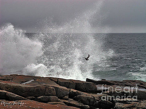 Waves crashing  by Michael Hughes