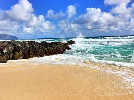 Waves crashing by Todd Aaron
