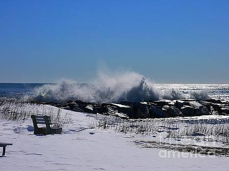 Waves by Nancie DeMellia