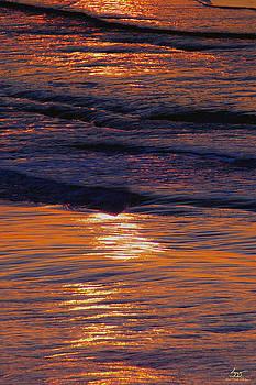 Sam Davis Johnson - Waves of Color