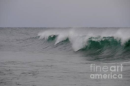 Waves of December by Sandra Updyke