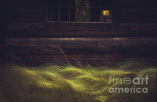 Waves of Grass by The Forests Edge Photography - Diane Sandoval