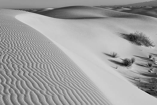 Waves of Sand by Larry Pollock