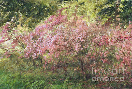Waves of Spring by Marilyn Cornwell