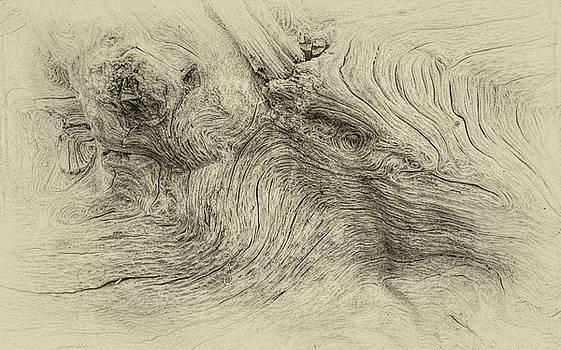 Andrew Wilson - Waves Of Wood