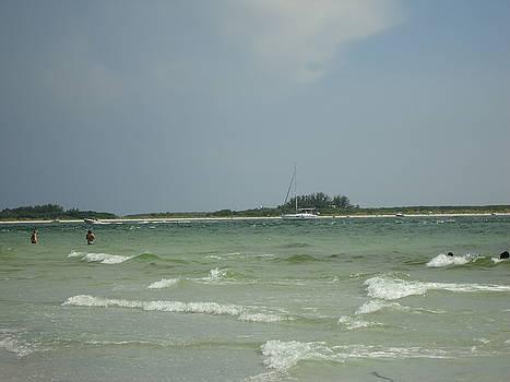 Wavy day at the beach by Debbie Wassmann