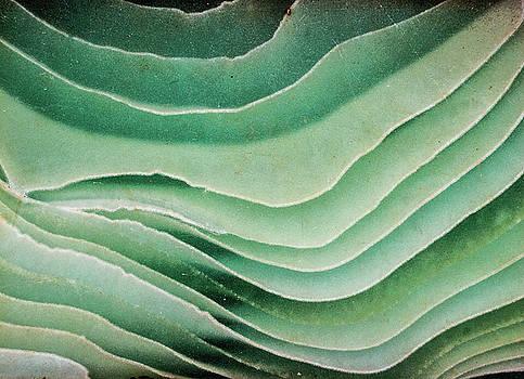 Hakon Soreide - Wavy Glass 2