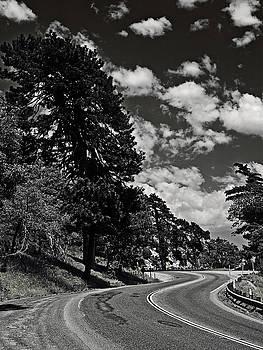 Wavy Highway by Ron Dubin