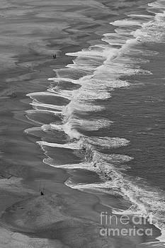 Wavy by Howard Ferrier