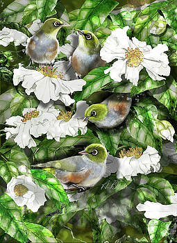 Wax Eyes in Camellia Bush by Roz Paterson