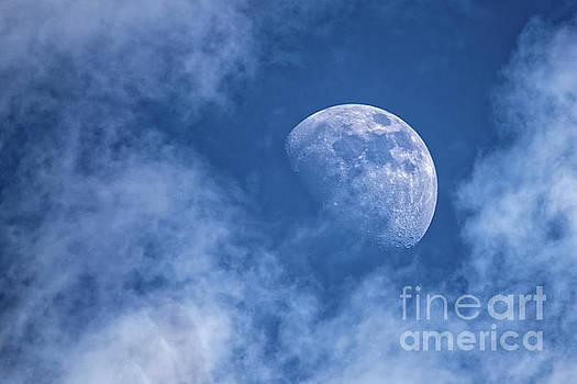 Waxing Blue Moon by Paul Mashburn