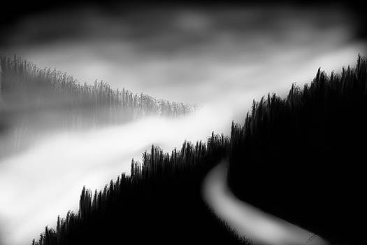 Way to the unknown by Salman Ravish