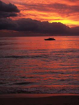 Waya Island Sunset by Diane Bombshelter