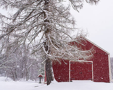 Wayside Inn Red Barn Covered in Snow Storm Reflection by Toby McGuire