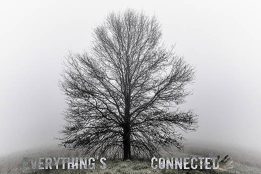 We Are Nature / Everything's Connected by Garett Gabriel
