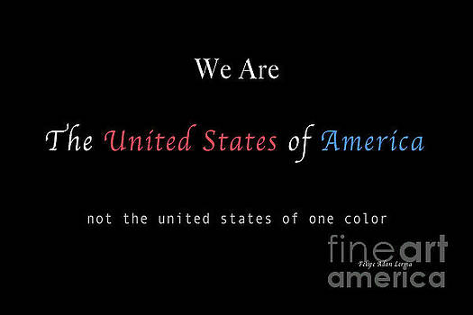 Felipe Adan Lerma - We Are the United States of America