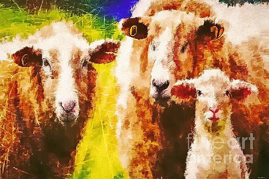 We Three Sheep by Tina LeCour