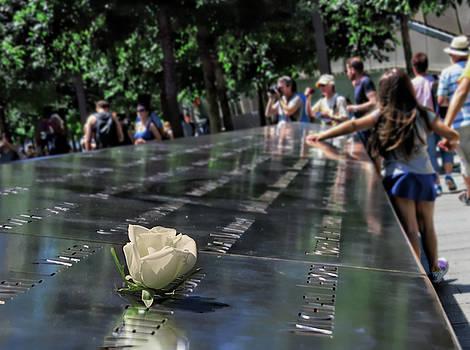 Nina Bradica - We Will Never Forget