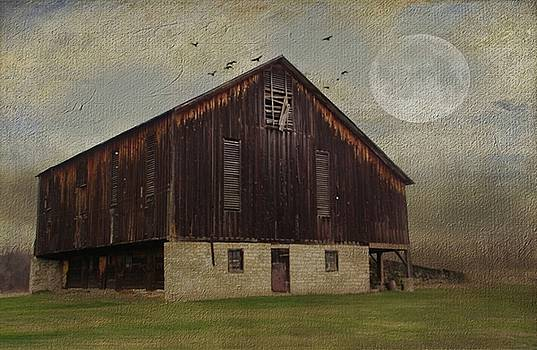 Weathered Barn and Birds by Stephanie Calhoun