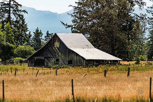 Weathered Barn by Claude Dalley