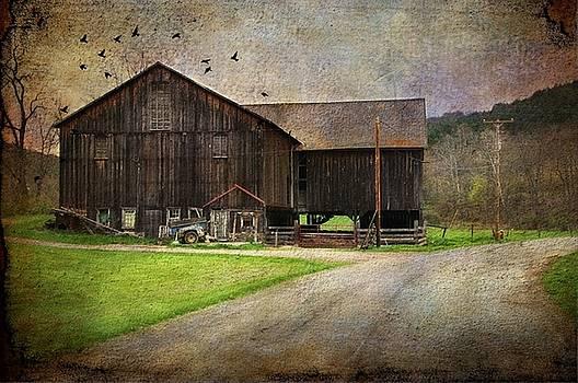 Weathered Barn by Stephanie Calhoun
