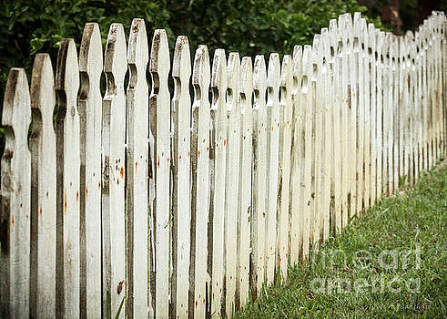 Weathered Fence by Todd Blanchard