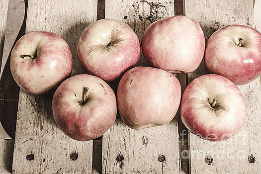 Weathered fruits by Jorgo Photography - Wall Art Gallery