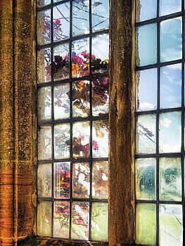 Weathered Old Window by Susie Peek