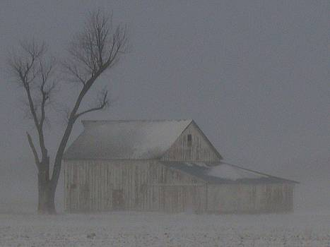 Weathering The Blizzard by J R Seymour