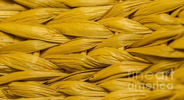 Dale Powell - Weave