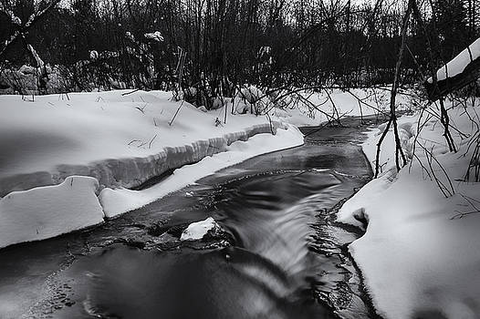 Weber Creek by Dan Hefle