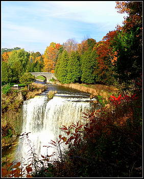 Webster's Falls I by Sherrie Robins