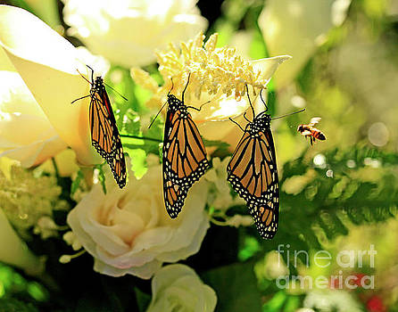 Wedding Flowers, Butterflies and Bee Photo by Luana K Perez