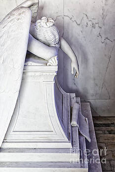 Weeping Angel, New Orleans 3 by Mary  Smyth